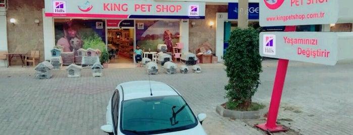 King Pet Shop is one of Tempat yang Disukai Sinan.