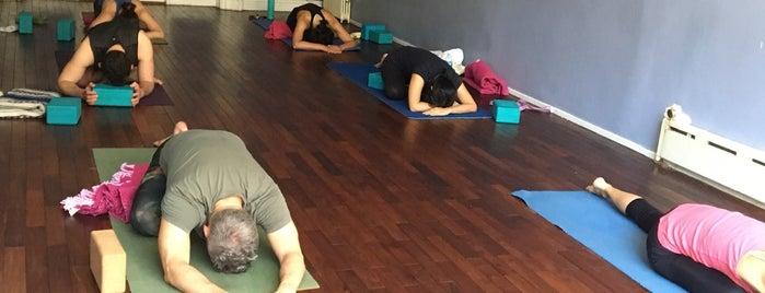 Area Yoga & Spa is one of Lugares guardados de Solange.