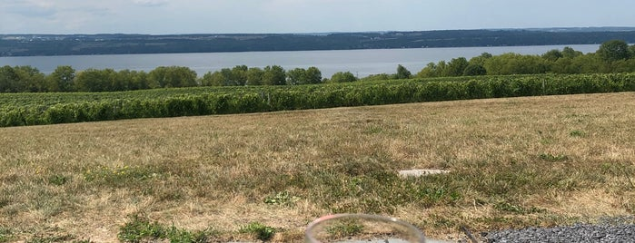 Boundary Breaks Vineyard is one of Ithaca And Upstate.