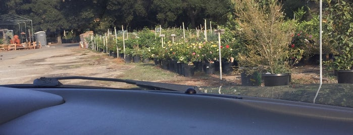 Myrtle Creek Botanical Gardens & Nursery is one of places to go.