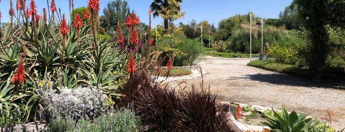 Jardin Mágico is one of puebla.