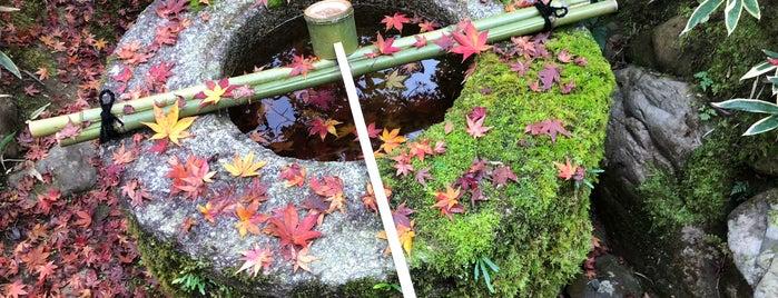 高桐院 庭園 is one of Kyoto Gardens.