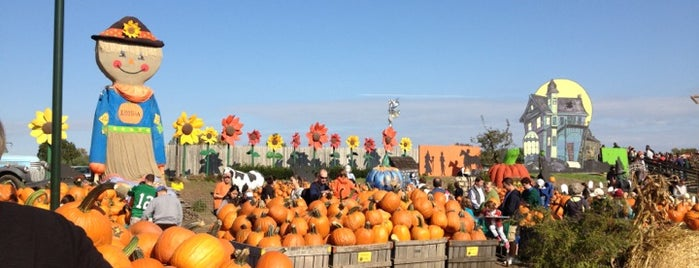 Linvilla Orchards is one of Philly.