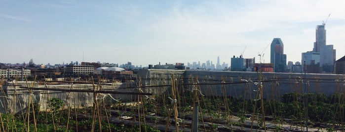 Brooklyn Grange Rooftop Farm is one of Lugares favoritos de IrmaZandl.