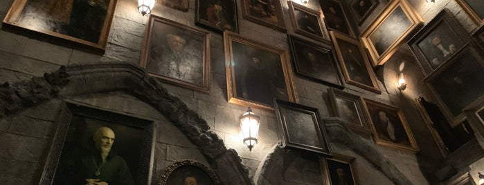 Harry Potter and the Forbidden Journey is one of Lugares favoritos de Fernando.