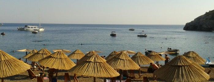 Kraljičina plaža is one of +381642216944#.