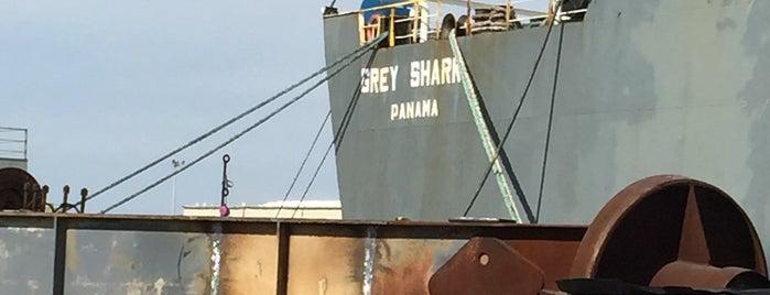 Detyens Shipyard is one of Gokhan : понравившиеся места.