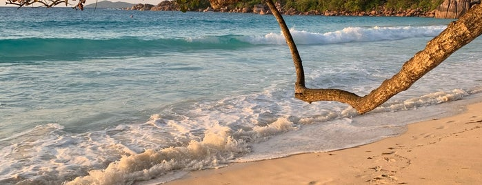 Anse Lazio is one of Let's Go To.