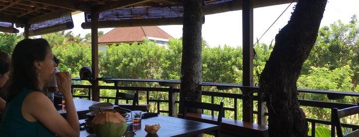 Bali eee