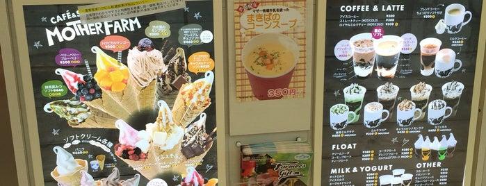 マザー牧場CAFÉ is one of Locais curtidos por ぜろ.