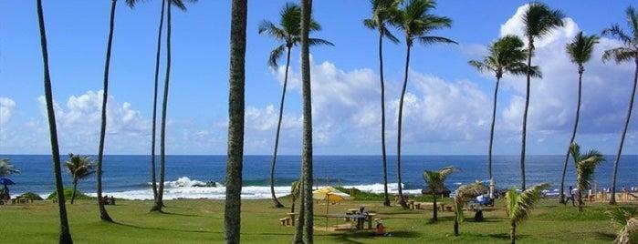 Praia Jardim de Alah is one of Tempat yang Disukai Karin Cristine.
