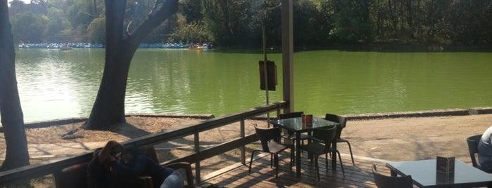 Cafeteria Deli El Mayor is one of CAFE.