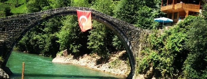 Osmanlı Alabalık is one of Yeme-İçme işleri!.