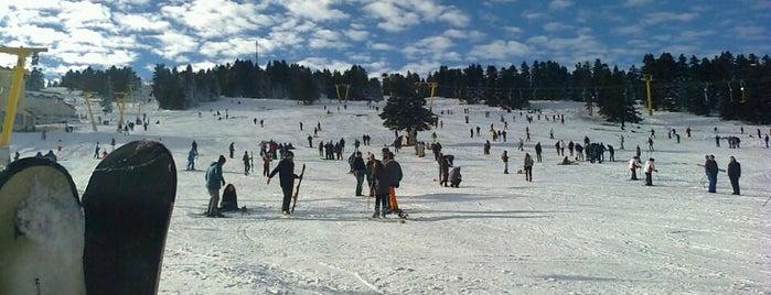 En iyi Kayak Fırsatları