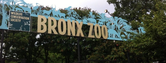 Bronx Park East is one of Denis'in Kaydettiği Mekanlar.