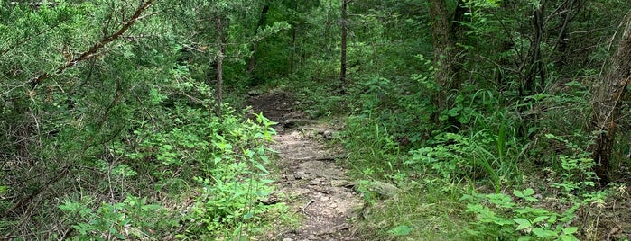 Lower Rock Ledges Trail is one of Crystal : понравившиеся места.