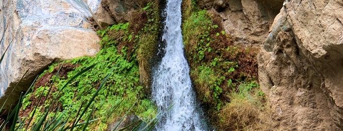 Darwin Falls is one of Crystal : понравившиеся места.