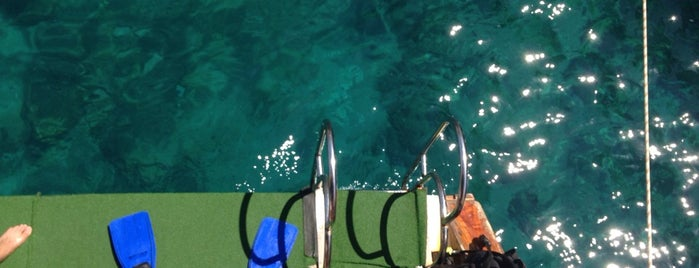 Amphora Diving School is one of Lieux qui ont plu à Gulnur.