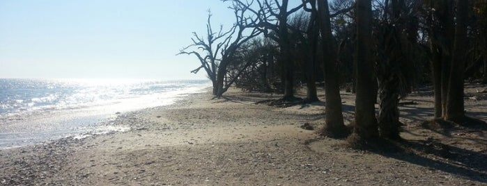 Botany Bay Beach is one of Charleston.