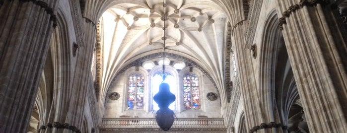 Catedral de Salamanca is one of Posti che sono piaciuti a Eduardo.