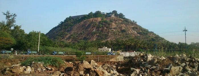 Palani Murugan Temple is one of Lugares que quero conhecer.