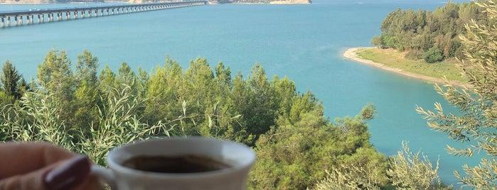 Manzara Cafe is one of Posti che sono piaciuti a Caner.