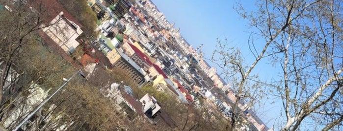 Сходи від Пейзажної Алеї до урочища Гончарі-Кожум'яки is one of Kiev.