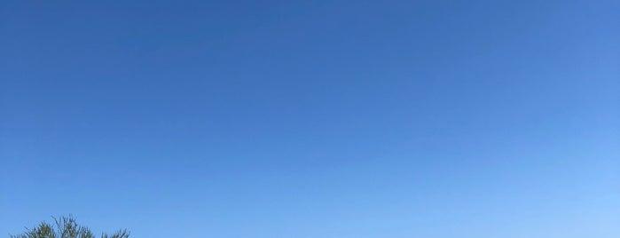 Cabo Del Sol -- Ocean Course is one of Juan : понравившиеся места.
