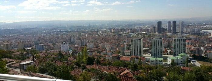 Gürbüz Home's is one of Ankara.