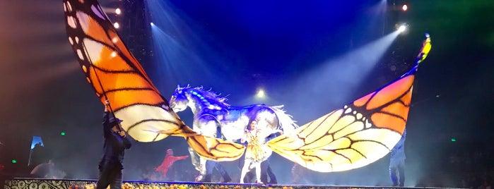 Cirque du Soleil Luzia is one of Posti che sono piaciuti a Burchin.