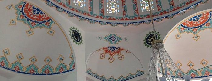 Bitez Camii is one of baha ali'nin Beğendiği Mekanlar.
