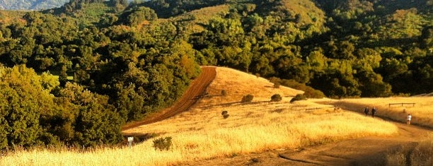 Fremont Older Open Space Preserve is one of SF Bay Area - been there I.
