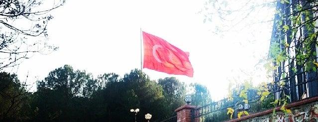 Temel Tıp Bilimleri Bölümü is one of สถานที่ที่ Dilek ถูกใจ.