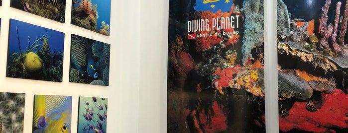 Diving Planet Centro De Buceo is one of Cartagena de Índias, Colombia.