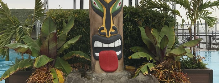 Tiki Island on Staten Island is one of Borough Bars to Check Out.