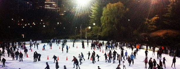 Wollman Rink is one of The Great Outdoors NY.