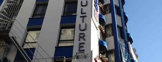 British Culture is one of Orte, die Sina gefallen.