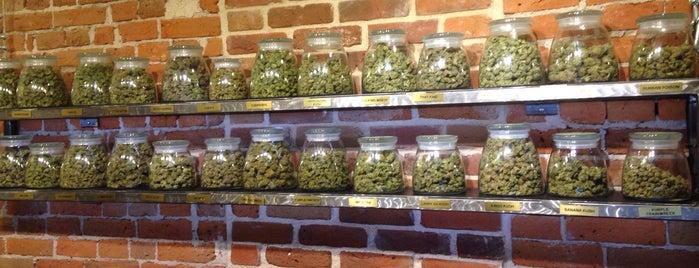 Botanico Wellness is one of Mile High: Denver To Dos.