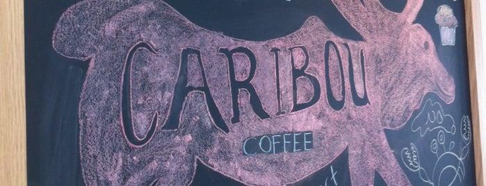 Caribou Coffee is one of Orte, die Kamil gefallen.