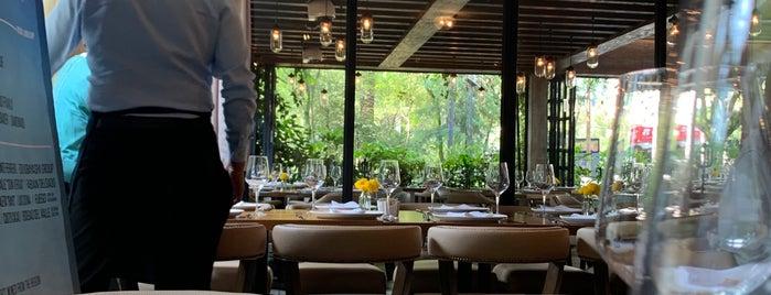 Dante Brasa y Fuego is one of Restaurantes.