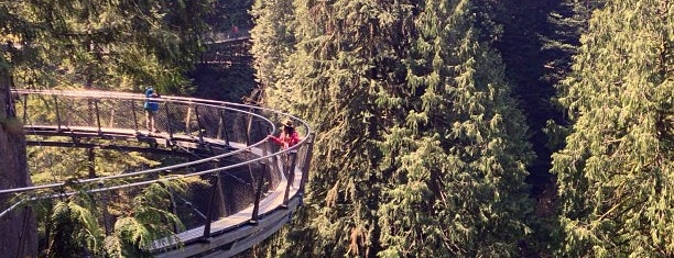 Capilano Cliffwalk is one of Orte, die Sarah gefallen.