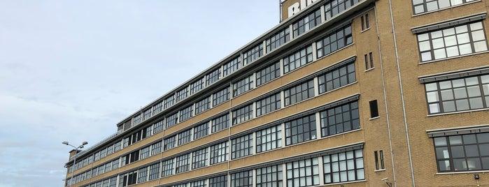 BINK36 is one of Den Haag Scheveningen.
