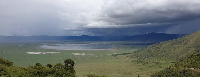 Ngorongoro Crater is one of Tempat yang Disukai Catherine.
