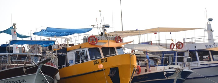 Oceanids Diving Center Boat is one of Lugares favoritos de Βεrκ.