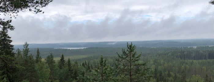 Рысья гора is one of Сортавала.