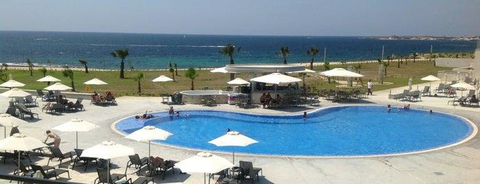 Amphora Hotel is one of สถานที่ที่ Nataly ถูกใจ.