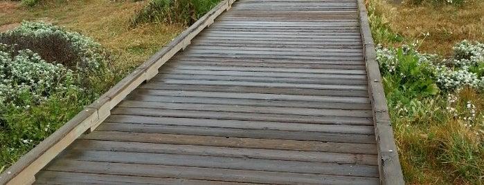Moonstone Beach Boardwalk is one of Best places in California.