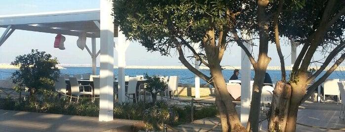 Ship Inn Marina is one of Travel Guide to Antalya.