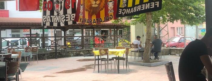 Pamukcu belediye çay bahçesi is one of สถานที่ที่ Halit ถูกใจ.