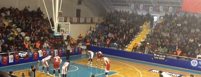 Mersin Edip Buran Spor Salonu is one of NTV Spor badge.